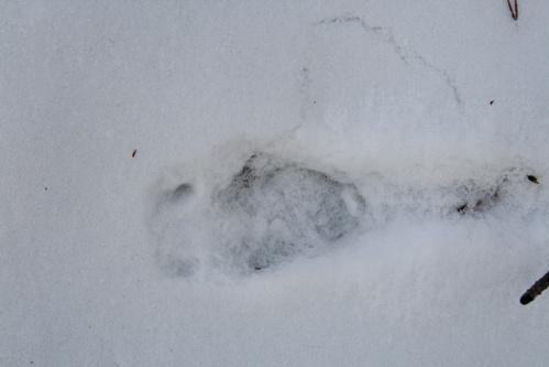 tchat gratuit pour rencontre moose jaw