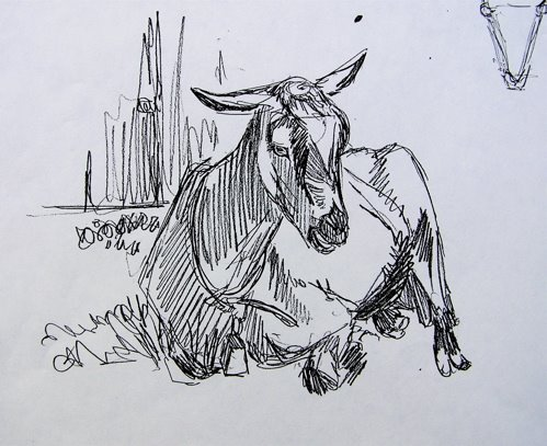 How to draw baby goat