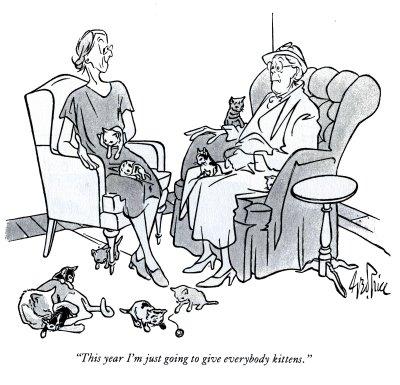 Julie Zickefoose On Blogspot Happy National Feral Cat Day